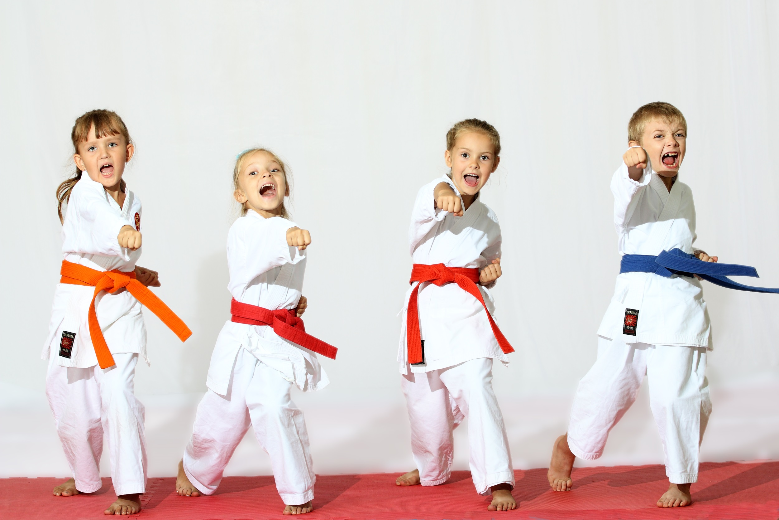 HVR Sports   karate stock photo boys and girls1 Rules for Karate